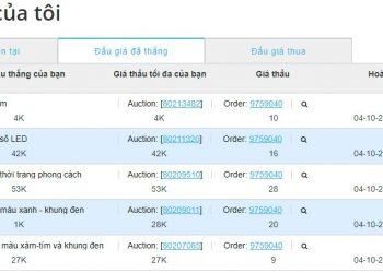 Hướng dẫn mua hàng đấu giá chỉ với vài nghìn đồng trên Chilindo 1