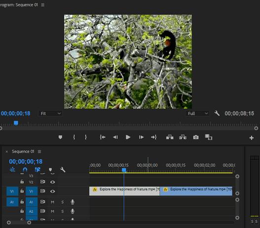 Đặt 2 video chuyển cảnh lại gần nhau