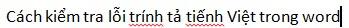 kiểm tra chính tả tiếng Việ trong Word