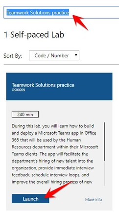 Cách tạo VPS Windows 12GB RAM bằng Lab Teamwork Solutions practice