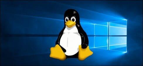 WSL 2 với nhân Linux windows 10 20H1