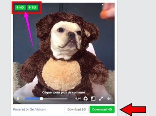 download video bị chặn